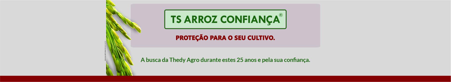 THEDYAGRO_TS_ARROZ-CONFIANCA-03-1