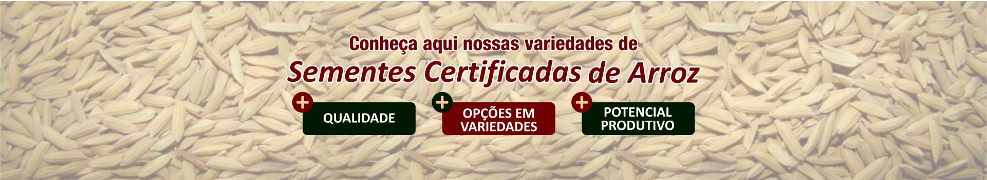 thedyagro_25_anos_sementes_certificadas_1920x350